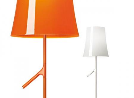 biridi terra orange