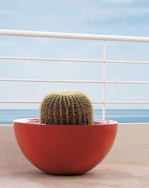 garden-pot-213770