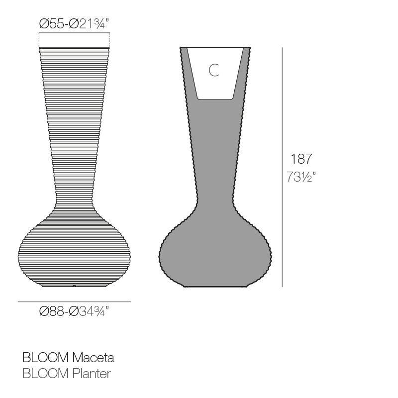 BLOOM-02