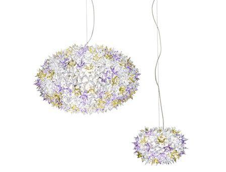 bloom_both1336210201_604